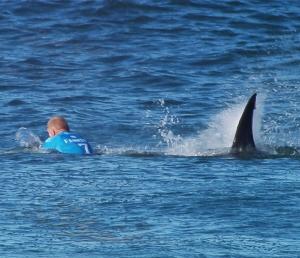 150719124656-01-fanning-shark-attack-super-169b