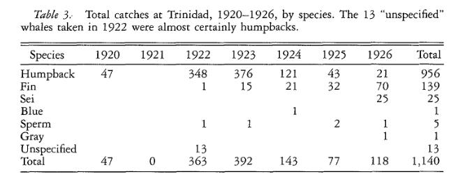 Trinidad whales