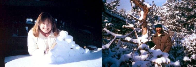 seal-rock-snow-fun