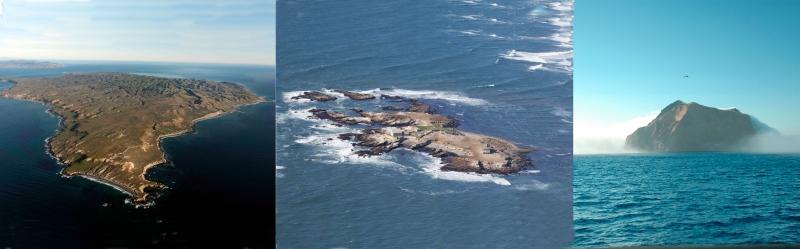 Three of my abalone field sites (from left): Santa Cruz island, Año Nuevo island, and Gudalaupe Island.