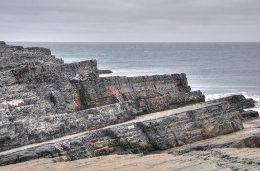 Avalon Ediacaran assemblage in eastern Newfoundland. Photo:Steve Piercey.
